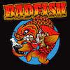 Badfish, State Theater, Washington