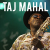 Taj Mahal, Canyon Club, Los Angeles