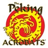 Peking Acrobats, Amaturo Theater, Fort Lauderdale