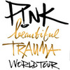 Pink, Oracle Arena, San Francisco