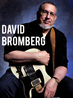 David Bromberg at Town Hall Theater