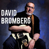David Bromberg, Neptune Theater, Seattle