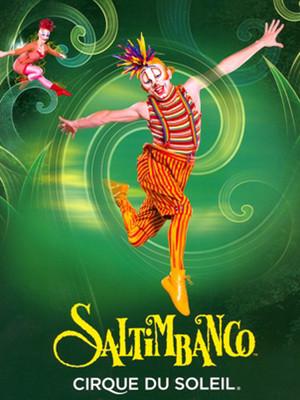 Cirque Du Soleil - Saltimbanco Poster