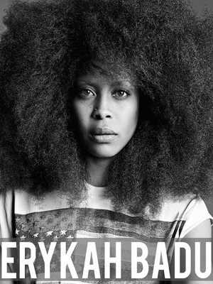 Erykah Badu at State Farm Arena