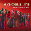 A Chorus Line, Morris Performing Arts Center, South Bend