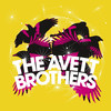 The Avett Brothers, Revention Music Center, Houston