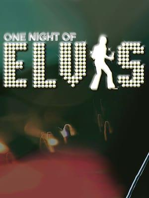One Night of Elvis - Lee Memphis King Poster