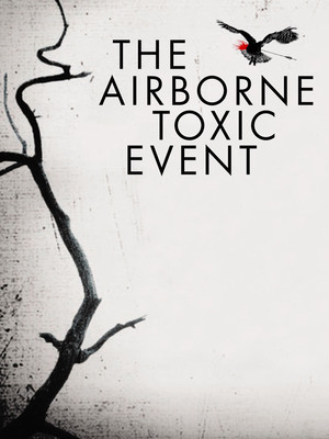 The Airborne Toxic Event at Webster Hall