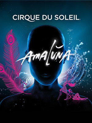 Cirque du Soleil Amaluna at Under The White Big Top - San Francisco