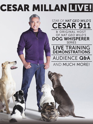 Cesar Millan at Chandler Center for the Arts
