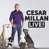 Cesar Millan, Lynn Memorial Auditorium, Boston