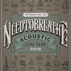 Needtobreathe, Peace Concert Hall, Greenville
