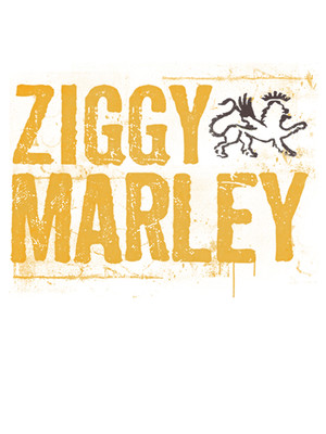 Ziggy Marley, Woodland Park Zoo, Seattle