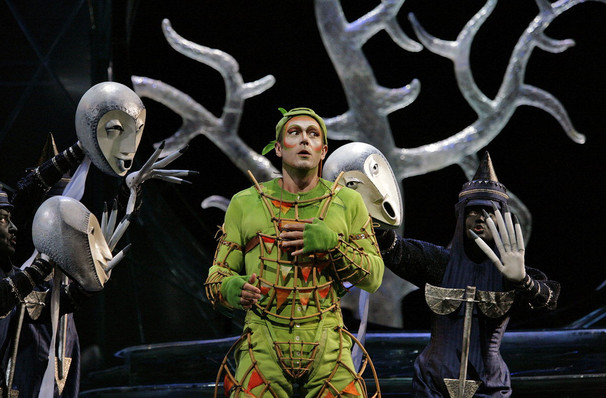 Metropolitan Opera The Magic Flute, Metropolitan Opera House, New York