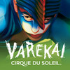 Cirque du Soleil Varekai, War Memorial Arena At Oncenter, Syracuse