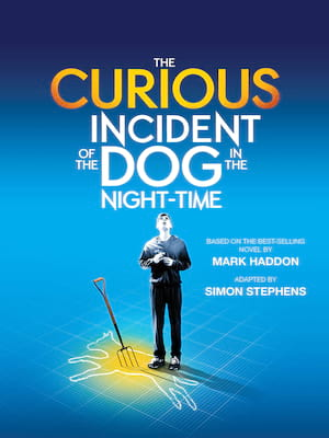 The Curious Incident of the Dog in the Night Time, Troubadour Wembley, London