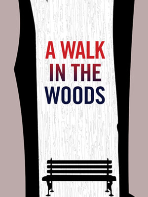 A Walk In The Woods Poster