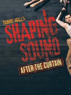 Shaping Sound Poster