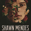 Shawn Mendes, Moda Center, Portland