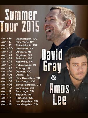 David Gray White Ladder Tour Poster