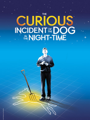 The Curious Incident of the Dog in the Night Time, Fisher Theatre, Detroit