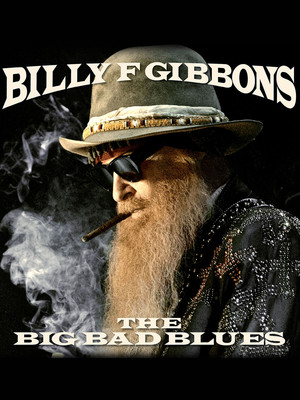 Billy Gibbons Poster
