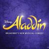 Aladdin, Cadillac Palace Theater, Chicago
