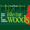 Into The Woods, Winspear Opera House, Dallas