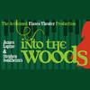 Into The Woods, Carol Morsani Hall, Tampa