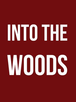 Into The Woods, Sarofim Hall, Houston