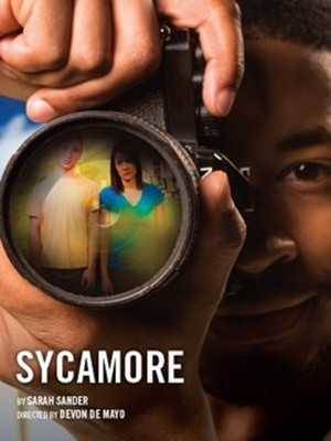 Sycamore Poster