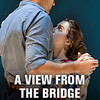 A View from the Bridge, Albert Goodman Theater, Chicago