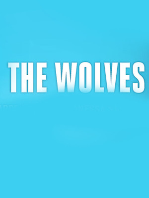 The Wolves at Owen Goodman Theater