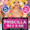 Priscilla Queen of the Desert, Eureka Theatre, San Francisco