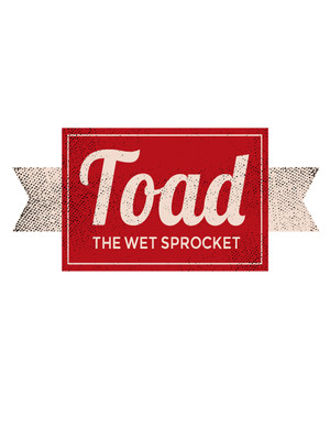 Toad the Wet Sprocket Poster