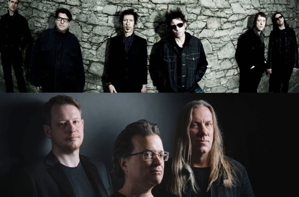 Violent Femmes and Echo and the Bunnymen, Meadow Brook Music Festival, Detroit