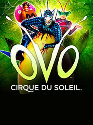 Cirque Du Soleil: OVO at Royal Albert Hall