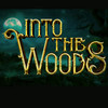 Into The Woods, John H Williams Theatre, Tulsa