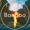 Bonobo, Union Hall, Edmonton