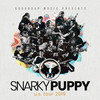 Snarky Puppy, Orpheum Theater, Los Angeles