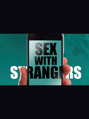 Sex With Strangers Poster