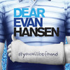 Dear Evan Hansen, Dreyfoos Concert Hall, West Palm Beach