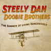 Steely Dan and The Doobie Brothers, Key Arena, Seattle