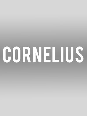 Cornelius at Echoplex