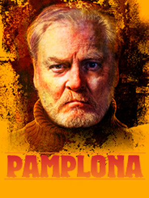 Pamplona at Owen Goodman Theater
