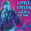 Little Steven and the Disciples of Soul, Hoyt Sherman Auditorium, Des Moines