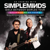 Simple Minds, Count Basie Theatre, New York