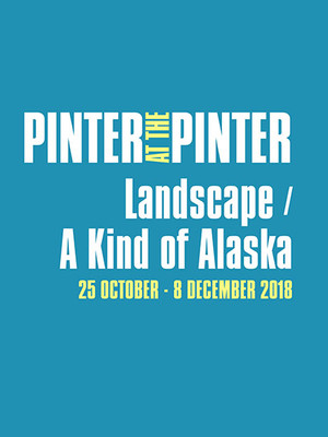 Pinter at the Pinter - Landscape/A Kind of Alaska Poster