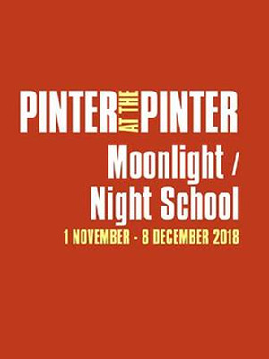 Pinter at the Pinter - Moonlight/Night School Poster