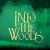 Into The Woods, Walt Disney Theater, Orlando